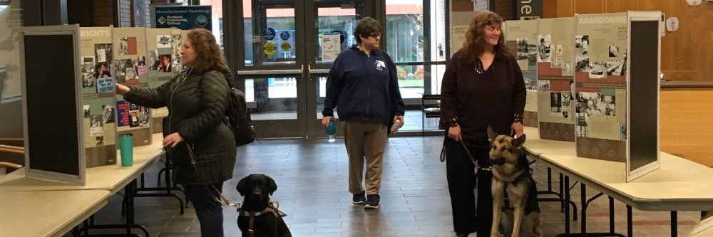 Two visitors with guide dogs explore exhibit