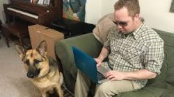 staff member typing on laptop next to service dog