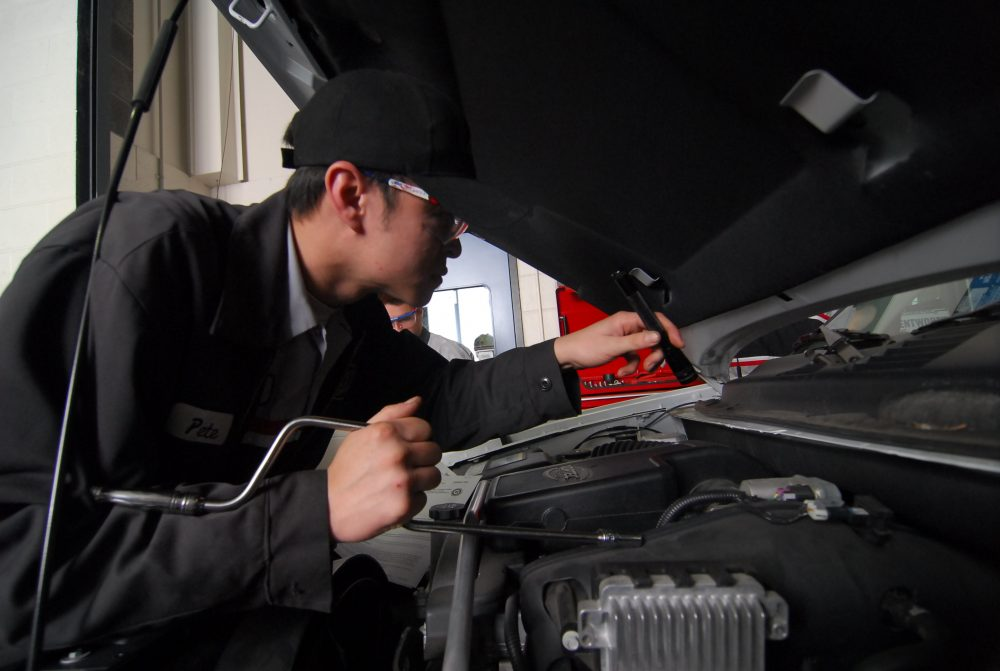 Automotive Services student looking at a car motor