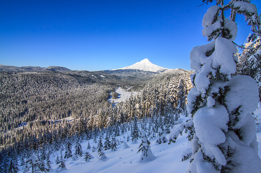 Majestic View of Mt. Hood on a bright, sunny day during the Winter months.