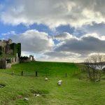 Clifden Castle 2018