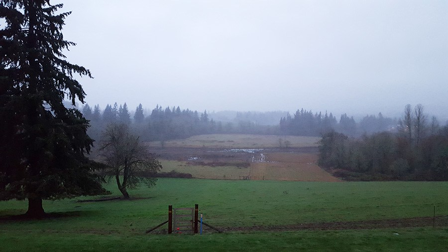 View from the lab of a field outside