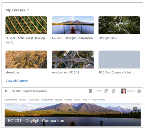 My Courses Widget and Course Homepage Banner in Brightspace