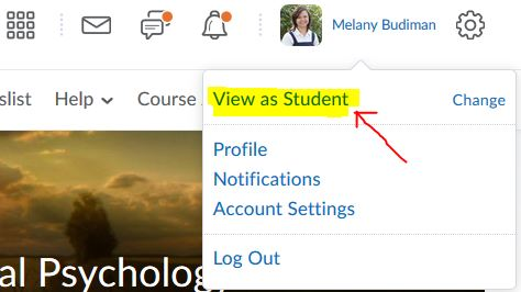 View your D2L Brightspace course as a student