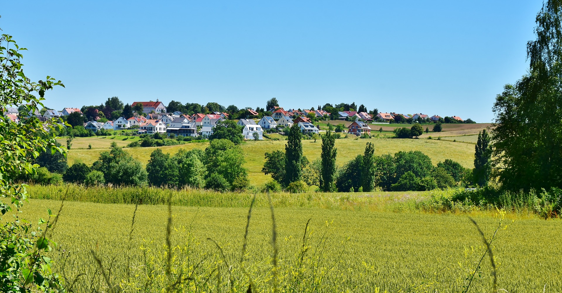 A town composed of houses located in the distance beyond a green grass meadow with trees in the middle.