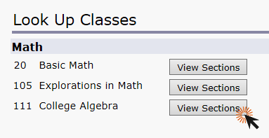Screenshot of look up classes page clicking view sections button