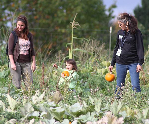Women and girl in pumpkin patch holding pumpkins