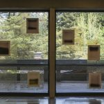 10 abstract landscape photos mounted on 2 large windows that look outside to a view of trees and a concrete walkway.