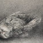 Charcoal and pastel drawing of an owl laying beside a votive candle.
