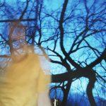 "Tyler Hohnstein, Blue Trees, 2005, photograph, 8"" x 10"""
