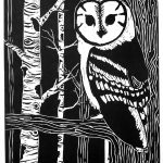 A black in white print of a barn owl sitting on a tree in the foreground, birch and unspecified trees placed throughout the background decreasing in detail.