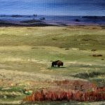 This is a buffalo standing alone in an empty field.