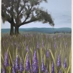 Lonely oak tree in a field of lilac flowers, overseeing hills.