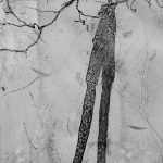 My shadow with my arms and head touching tree branches, causing an illusion that I am tall and thin.