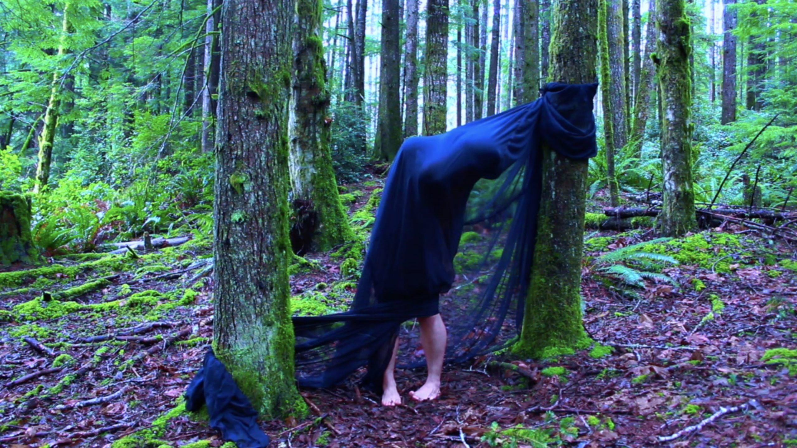 video still of figure wrapped in dark cloth standing between two trees in a forest