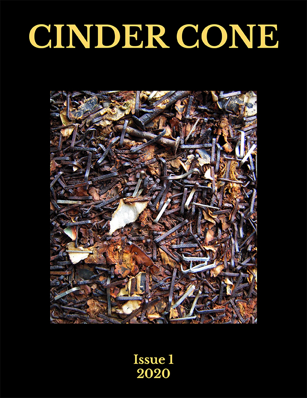 Cinder Cone cover with photo of rusty nails