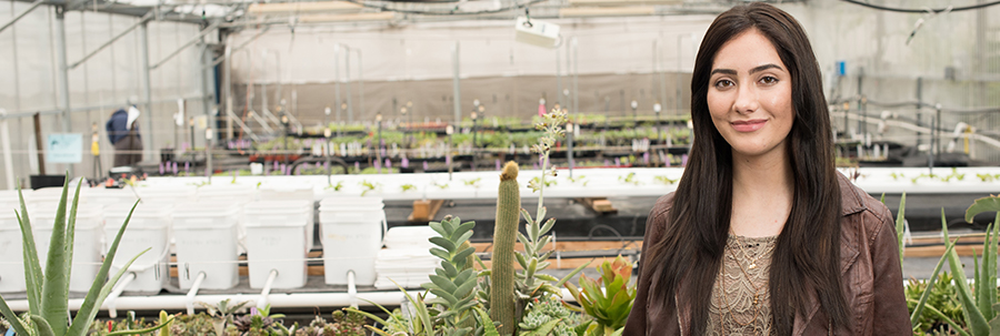 Landscape Technology student in a greenhouse