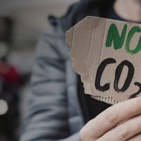 "Close-up of a ""no CO2"" sign written on a ripped-out piece of cardboard"