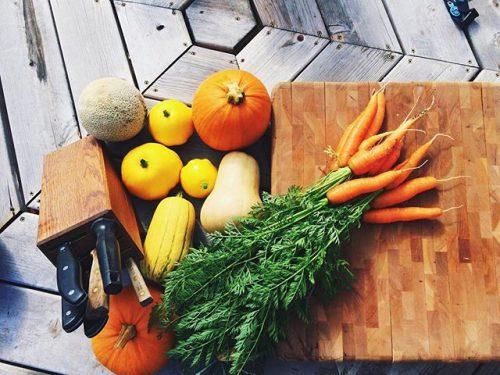 Harvest from garden