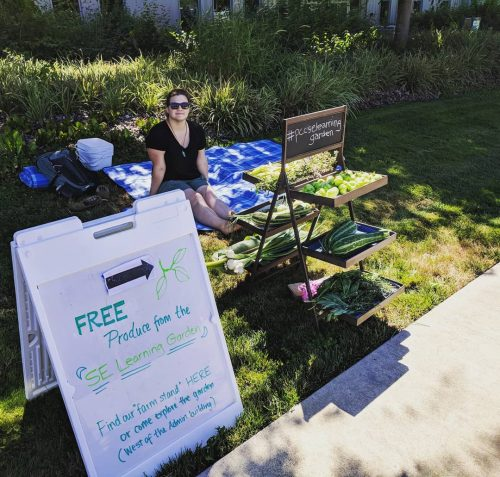 Free food stand in the Learning Garden