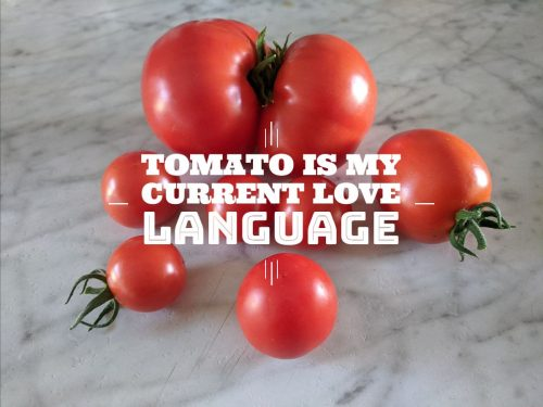 """tomatoes with text """"tomato is my current love language"""""""