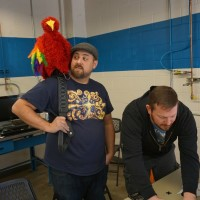 'Creepy Pete,' the electronic parrot, does his creepy thing.