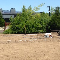 Like the Learning Gardens at the Rock Creek and Sylvania campuses, Newberg's garden will provide a variety of learning opportunities.