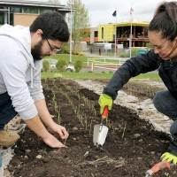 Besides developing the garden and increasing production, the Sustainability Office has brought in programs and divisions to provide community-based learning opportunities and created on-site classroom collaborations.