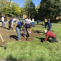 Cascade creates learning garden. Ripping up sod.