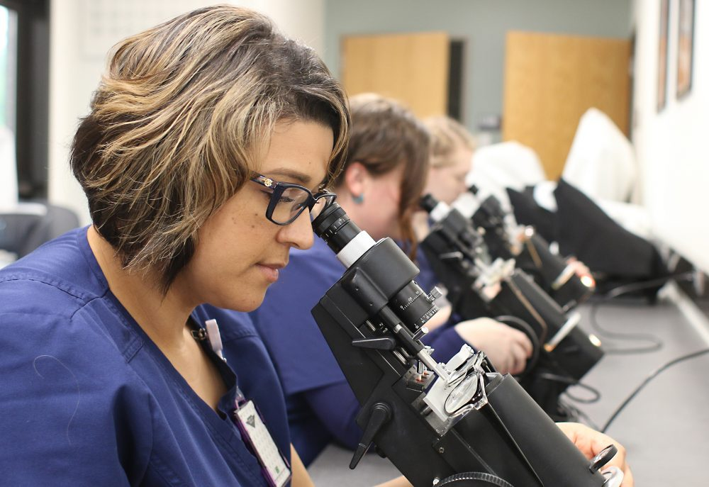 Looking into microscopes.