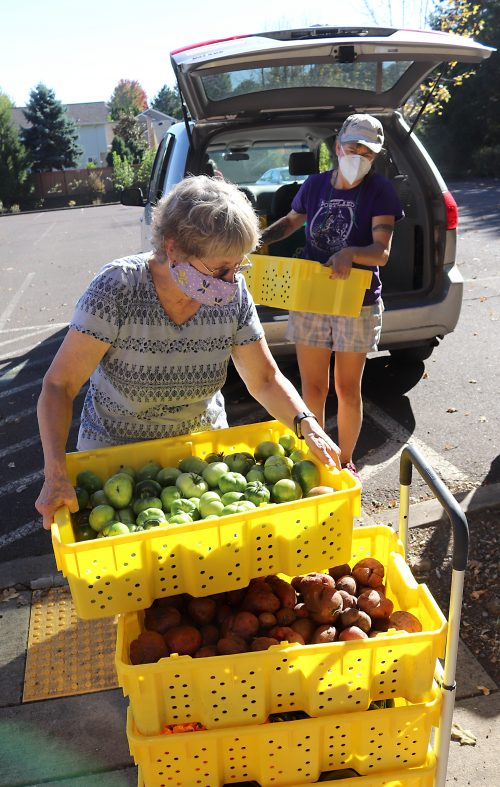 Community members stack fresh PCC produce for the food pantry at St. Juan Diego Church.