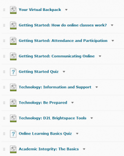 A sample listing of content from the course cartridge.