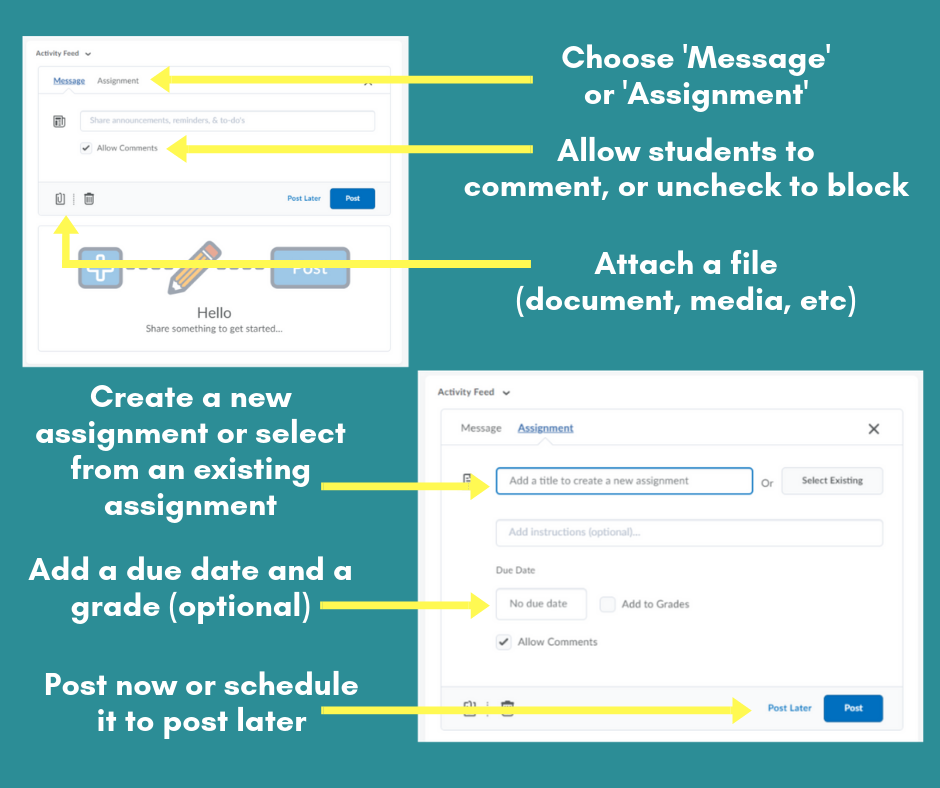 Graphic view of the homepage widget and how to create a message or assignment