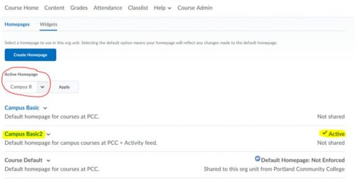 Screenshot of the course admin option to edit the homepage to add the activity feed widget as described above