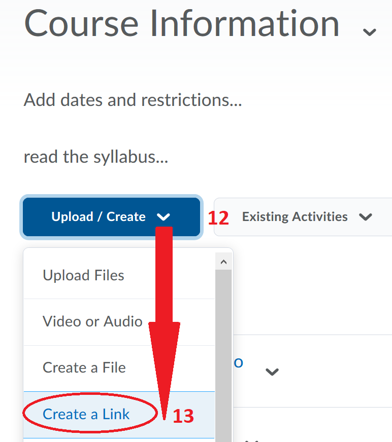 Step 12: Click Upload/Create and Step 13: Select Create a Link
