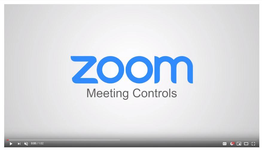 Zoom video link