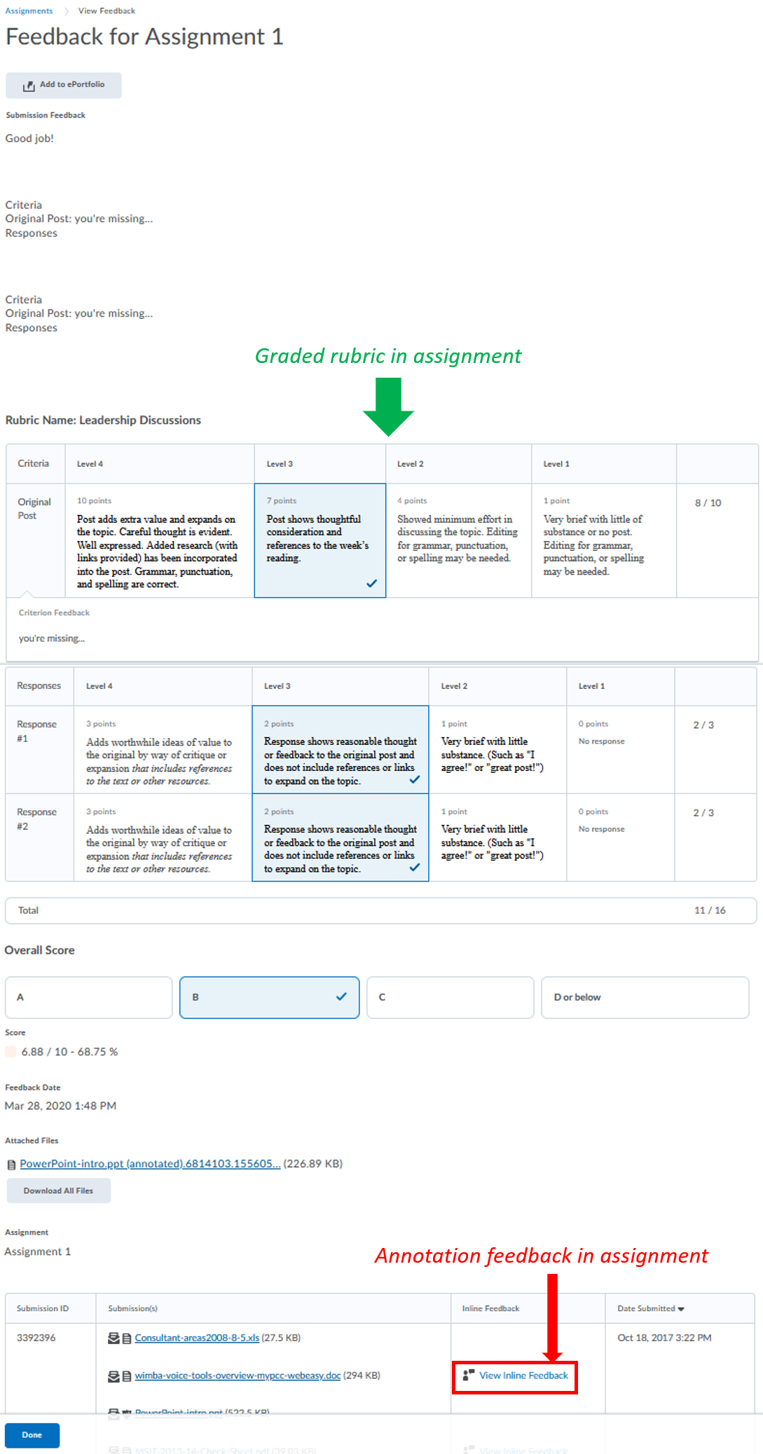 student-view-graded-rubric-annotation-assignment_in Assignments