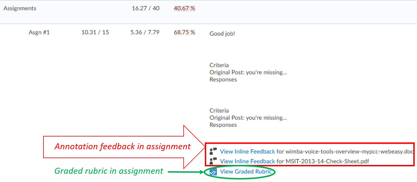 student-view-graded-rubric-annotation-assignment_in Grades