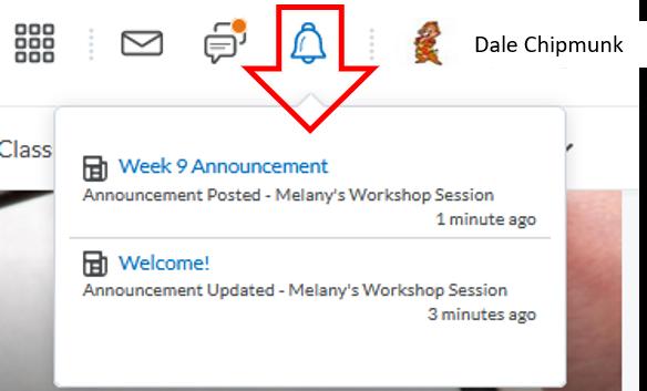 Update alerts-display new updates