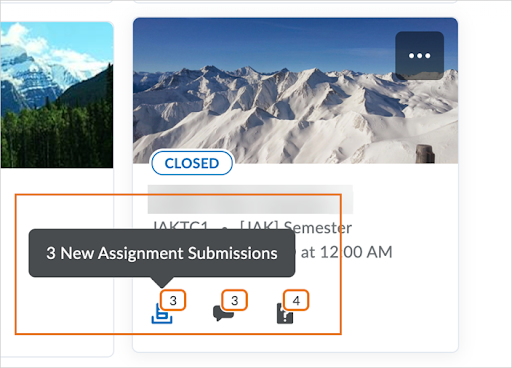 The My Courses widget displays unevaluated Assignments submissions