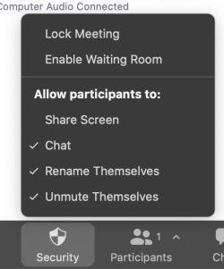 The new zoom security button lets you quickly manage participants.
