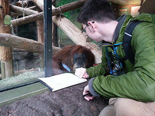 Student observing primates at the zoo