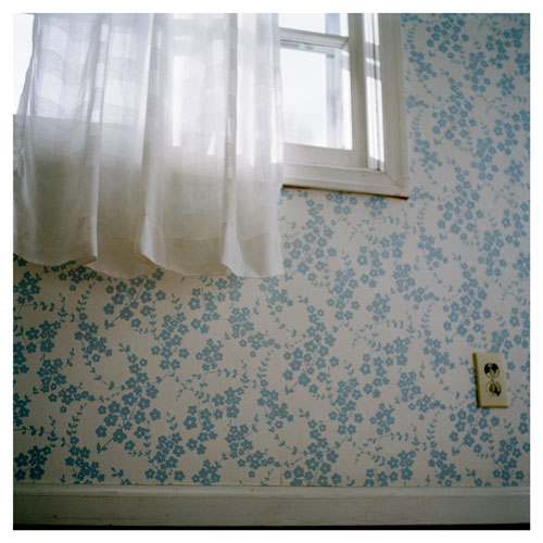 Photograph of a sunny window covered by a white curtain