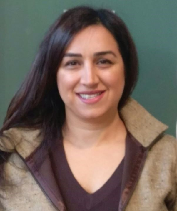 Farin Hajarizadeh