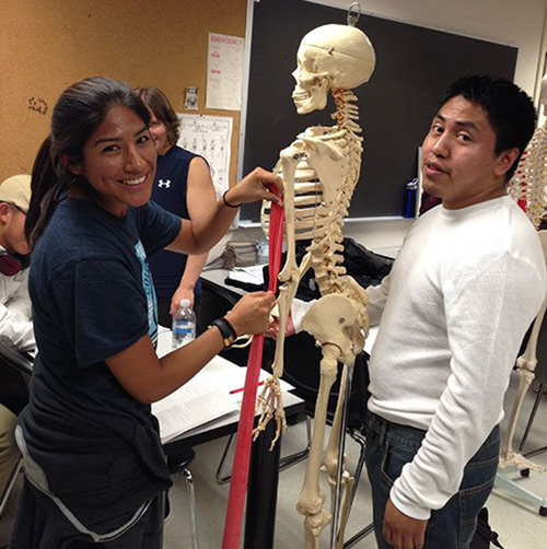 Two students standing with a skeleton model in a classroom