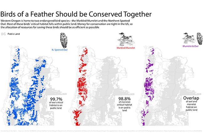 student map sample: bird species conservation