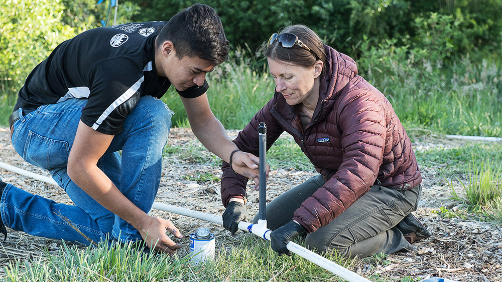 Two students working together to set up an irrigation system in a field