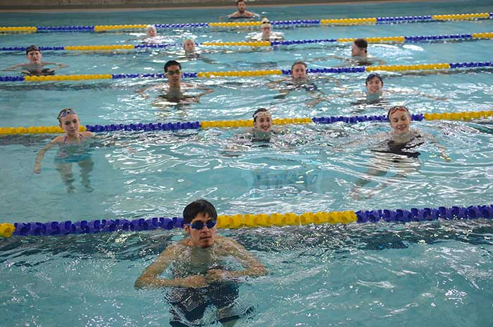 Swimmers in the lanes in Sylvania pool
