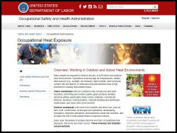 Link to the Department of Labor Website