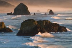 Sea stacks near sunset at Ecola